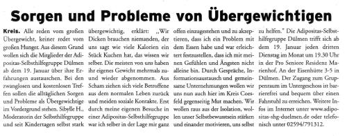 Artikel im Stadt Anzeiger 01 06.01.2010